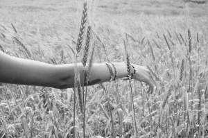 Handinwheat